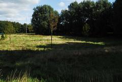 runcorn (patart00) Tags: nature runcorn