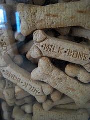 dog milk snack bones treat apb365