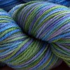 *Jamie* 4 oz Macio Organic Merino Yarn + trim