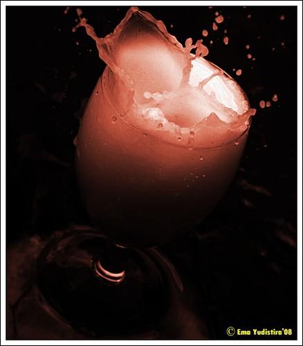 milk1'