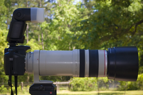 EF 100-400mm IS