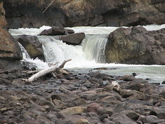 Sunwapta Falls (Tom Ayres) Tags: canada falls alberta sunwapta