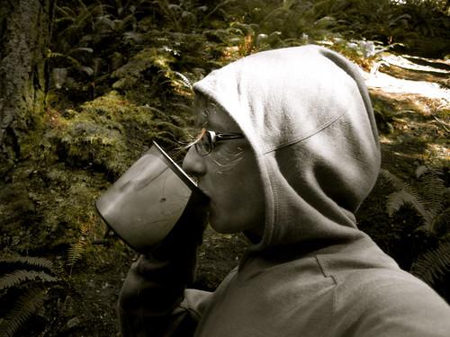 Cedar Tea