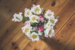 Romantic bouquet (Infomastern) Tags: blomma bouquet bukett flower fotosondag romance romantik tulip tulpan exif:model=canoneos760d exif:aperture=ƒ45 geocountry camera:make=canon geocity camera:model=canoneos760d geostate geolocation exif:lens=efs18200mmf3556is exif:focallength=50mm exif:isospeed=6400 exif:make=canon fs170219