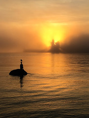 A certain air of Turner II (rrestout) Tags: sculpture 222naturalphenomenon vancouver sunrise forest silhouette canada orange fog 309marinefeature sea woods