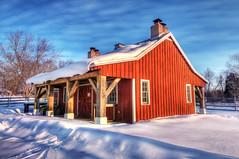 Little Red Barn (Chuck Robinson) Tags: winter red snow texture barn nikon maryland 2009 hdr d300 annearundel photomatix littleredbarn kinderfarm
