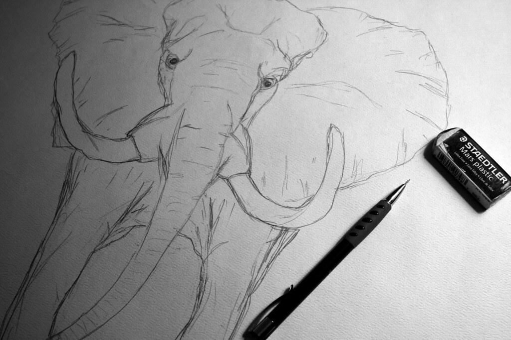 Quick Hour Sketch!