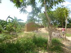 "africa 2013 469 <a style=""margin-left:10px; font-size:0.8em;"" href=""http://www.flickr.com/photos/104703188@N06/13063908885/"" target=""_blank"">@flickr</a>"
