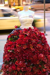 full skirt of roses