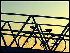 She's resting now... ( AnA oMeLeTe ) Tags: summer portugal lines linhas relax do geometry softness bicicleta agosto prdosol fim end vero bem algarve quatro dias descanso 2007 bycicle geometria olho folga suavidade anaomelete fujifilmfinepixs5600 prolongada merecidos