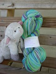 Bobo and Trinity's yarn