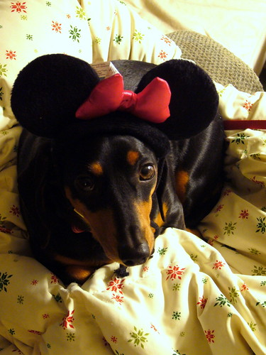 Frieda Mouse