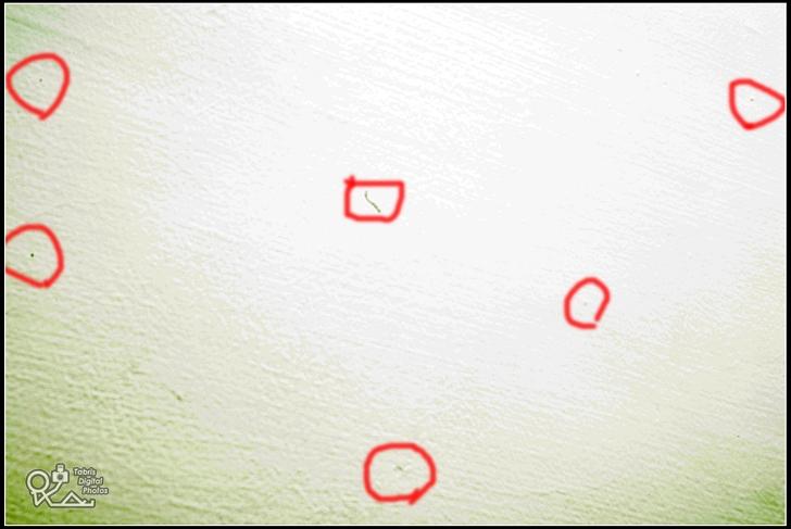 DSLR CCD入塵與清理(Pentax除塵果凍棒)
