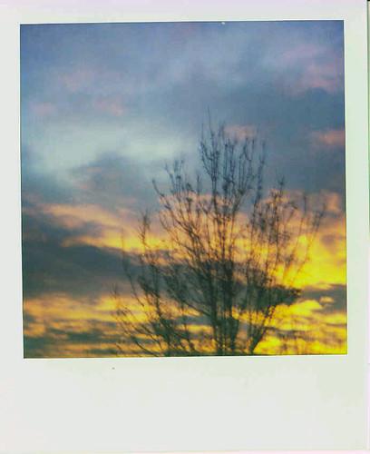 polaroid.sunrise