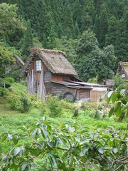 Shirakawa-go: farm building (muuranker) Tags: building japan architecture farm worldheritagesite thatch gable shirakawago gassho leanto goldenglobe
