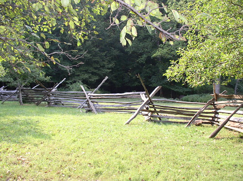Primitive Fence