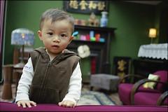 shanghai kid