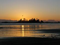Tofino Sunset on Chesterman Beach (wiseleyb) Tags: tofino