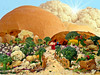 FoodScape Completa (Jorge L. Gazzano) Tags: food landscape comida paisagem lúdico foodscape cameradeourobrasil sonyh9 jorgelgazzano