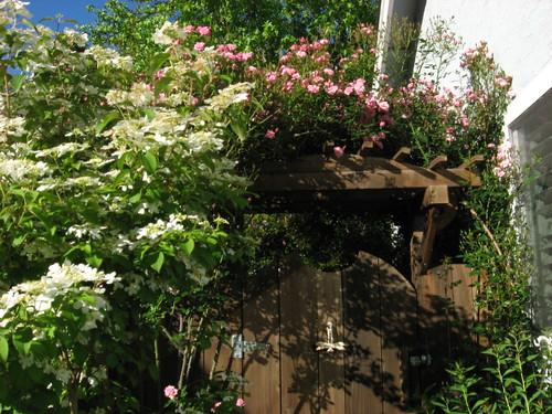 garden4-08 002
