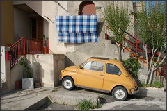 Sicilian pet (Daveness_98) Tags: auto road street city italy cute cars car italian alley automobile europe fiat strasse via loveit vehicle sicily 2008 macchina italie sicilia fiat500 tindari weg straat macchine sicilie voertuig blueribbonwinner mezzogiorno platinumphoto anawesomeshot isawyoufirst theunforgettablepictures platinumheartawards
