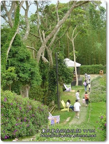 新竹薰衣草森林(尖石)-053