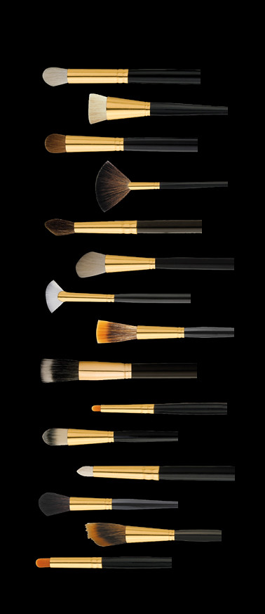 Ten Image Professional Cosmetics Brushes