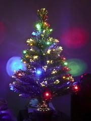 X-mas Tree-2 (ASHCROFT54) Tags: christmas 15fav holiday color tree 1025fav silver festive lights topv555 bright 5 panasonic explore xmastree 2007 photopostcard 10faves mywinners colorphotoaward dmctz3 betterthangood hohoholidays07