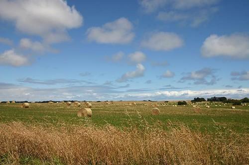 Australian farmland...