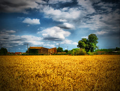 A Simple Rural Landscape (ToniVC) Tags: summer sky sun field clouds rural canon landscape spain view wheat cereal harvest sunny scene catalonia girona powershot catalunya a640 llambilles tonivc