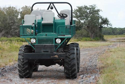 kissimmee prairie state park 1-12-08 083