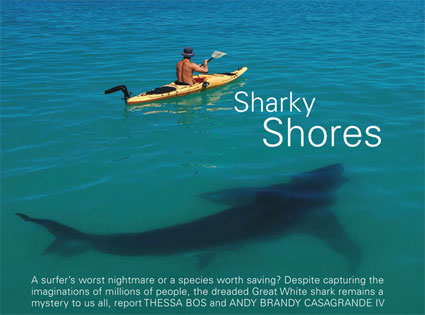 Sharky Shores