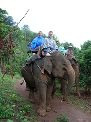 Elephant Trek (Krystal & Erik) Tags: elephant trek thailand hike mai jungle chiang