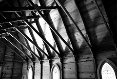 Church Ceiling, BW (feeling exposed) Tags: park wood pink trees sunlight green silver woods florida sarasota spanishpoint