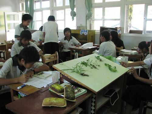 蘭嶼中學參訪 (3)