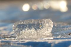 Sunny ice (evisdotter) Tags: ice sunny light macro bokeh winter nature sooc reflections