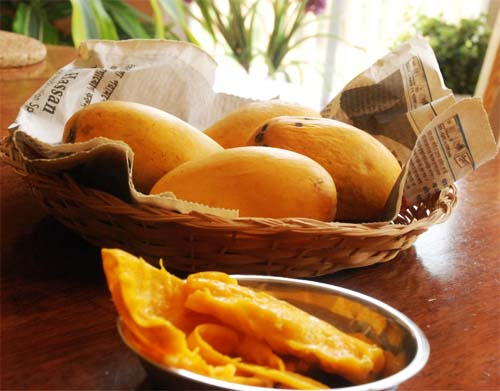 Mango1_Full