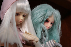 Strawberry & Mint (Lobita inquieta) Tags: bjd volks fairyland msd shushu toppi minifee