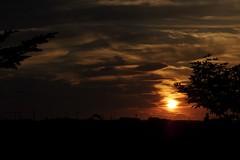 原野に沈む夕陽