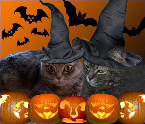 halloween_both