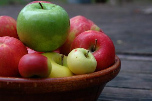 Apple Ark