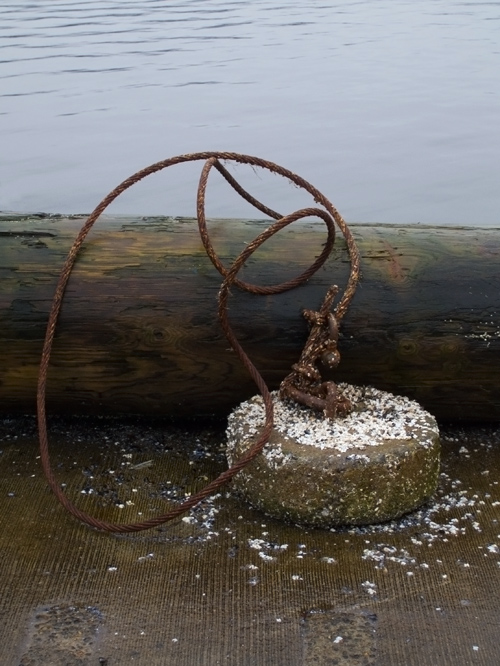 weight with barnacle debris