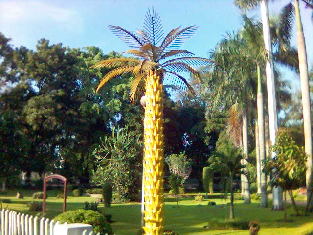 pohonplastik