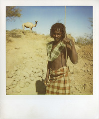 Afar man and camel on Polaroid, Danakil, Ethiopia (Eric Lafforgue) Tags: africa people haircut men vertical hair polaroid photography day desert african culture tribal camel tradition ethiopia tribe ethnic hairstyle adultsonly oneperson tribo frontview confidence hornofafrica individuality ethnology afar eastafrica thiopien etiopia ethiopie realpeople etiopa colorimage lookingatcamera onlymen onemanonly  traveldestination danakil etiopija 1people pastoralist ethiopi  etiopien etipia  etiyopya  nomadicpeople   asaita  assayta      zzzzz076