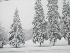 Jan 02 2008_snow_0386.jpg (chris422us@verizon.net) Tags: lake snow snowcovered photoshopelements