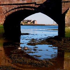 The Arch-The Ducks-The Reflections (billtam) Tags: old bridge blue sky colour reflection green water stone canon river landscape arch northumberland reflexions berwick the a620 tweedriver perfectphotographer
