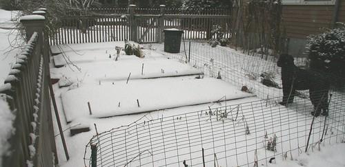 march 1 garden