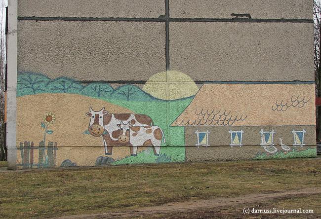 minsk_cows