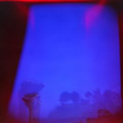 RGB***Blue***El espritu del avestruz (Trons) Tags: blue espaa 120 6x6 film azul analog mediumformat holga lomo lomografa lomography spain espanha exposure toycamera double safety ostrich lightleak plastic ii squareformat 1984 avestruz expired espagne santander cantabria kodacolor doble analgico exposicin pelcula cabrceno cfn moyenformat medioformato caducado formatomedio mittleformat entradadeluz