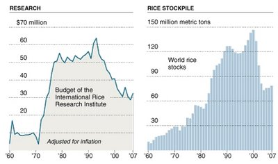 rice research versus stockpiling